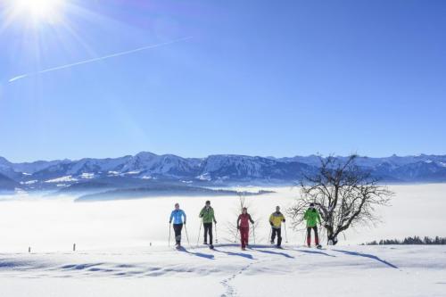 Winteraussicht Sulzberg