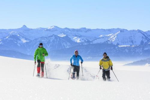 Schneeschuhwandern in Sulzberg